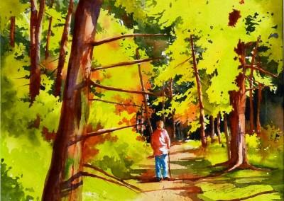 Promenades en forêt X, solitudes (30x15po)