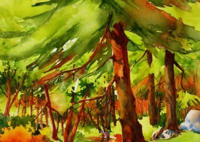 Randonnée en forêt VI,marche à deux(30x15po)